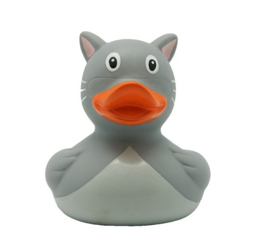 cat rubber duck