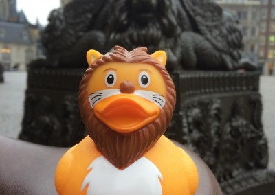 Lion Rubber Duck Damsquare