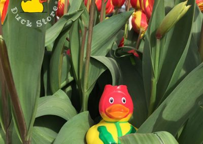 Enjoying 500.000 beautiful tulips on 60 locations in Amsterdam. It's Tulp Festival!